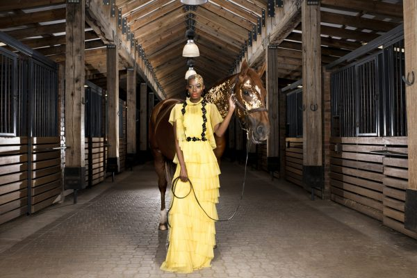 Steyn City_Luxury_Equestrian Centre_Stable